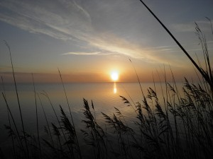 Vi er altid på vej og dog her. På vej mod mørket, på vej mod lyset. Vi kan sørge, eller vi kan glæde os over den sti, der tegner sig foran os, mens vi må vide, at alting vender, ender. Altid, altid er vi dog her. Nu. Om solen synker eller stiger. Foto: Per Kreutzmann